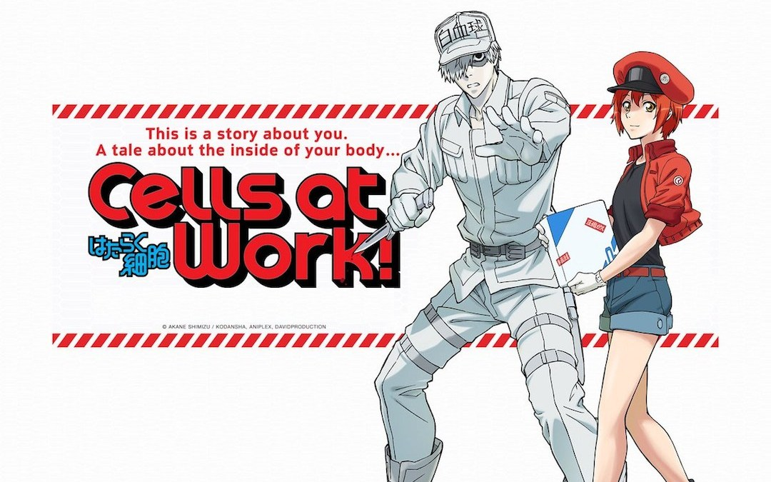 cellsatwork